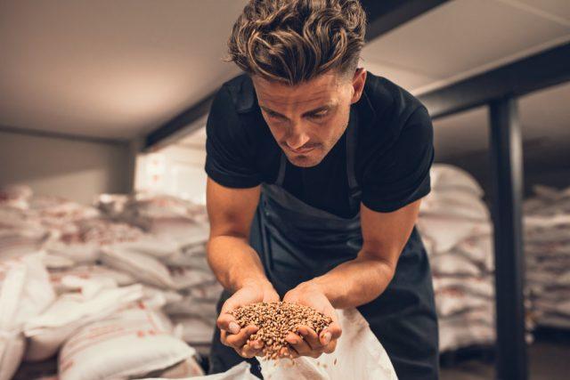 麦を選定する男性