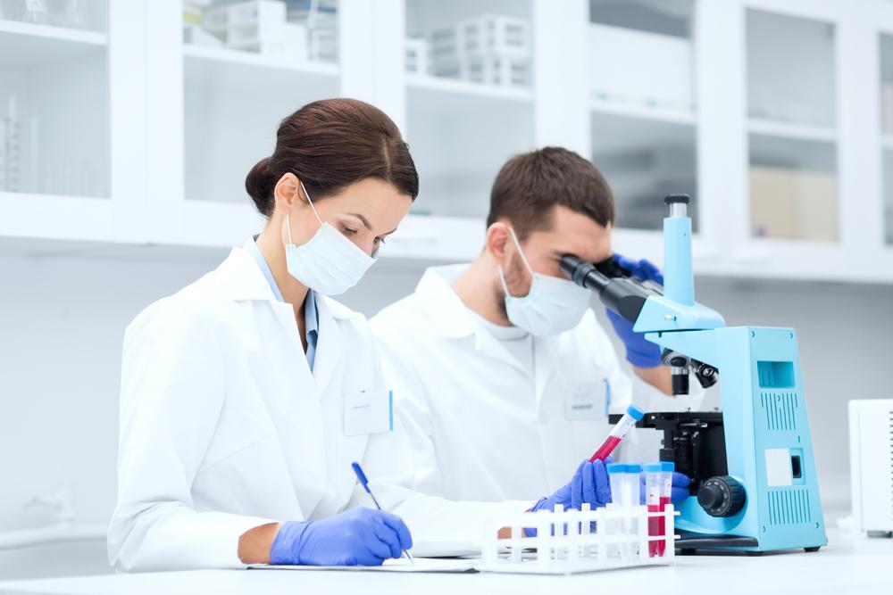 顕微鏡でサンプルを調べる研究員