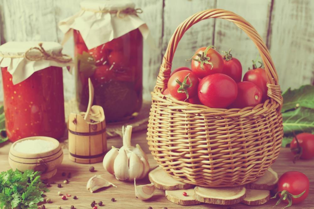 全てトマトの種から始まった!就活生必見「カゴメ」企業研究