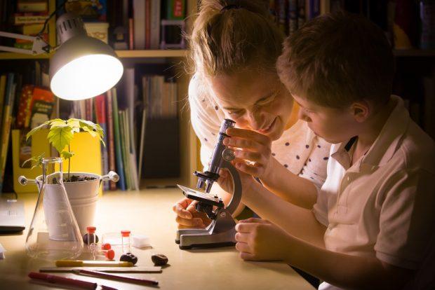 顕微鏡を使って観察する親子