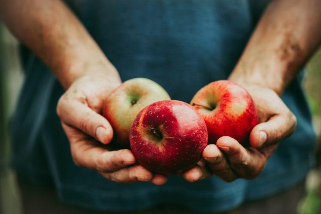リンゴを持つ人の手