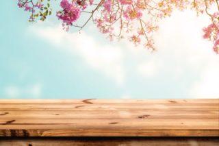 ピンクの花と桜と木製の台
