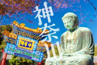 神奈川の就活