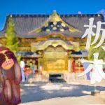 栃木県の就活