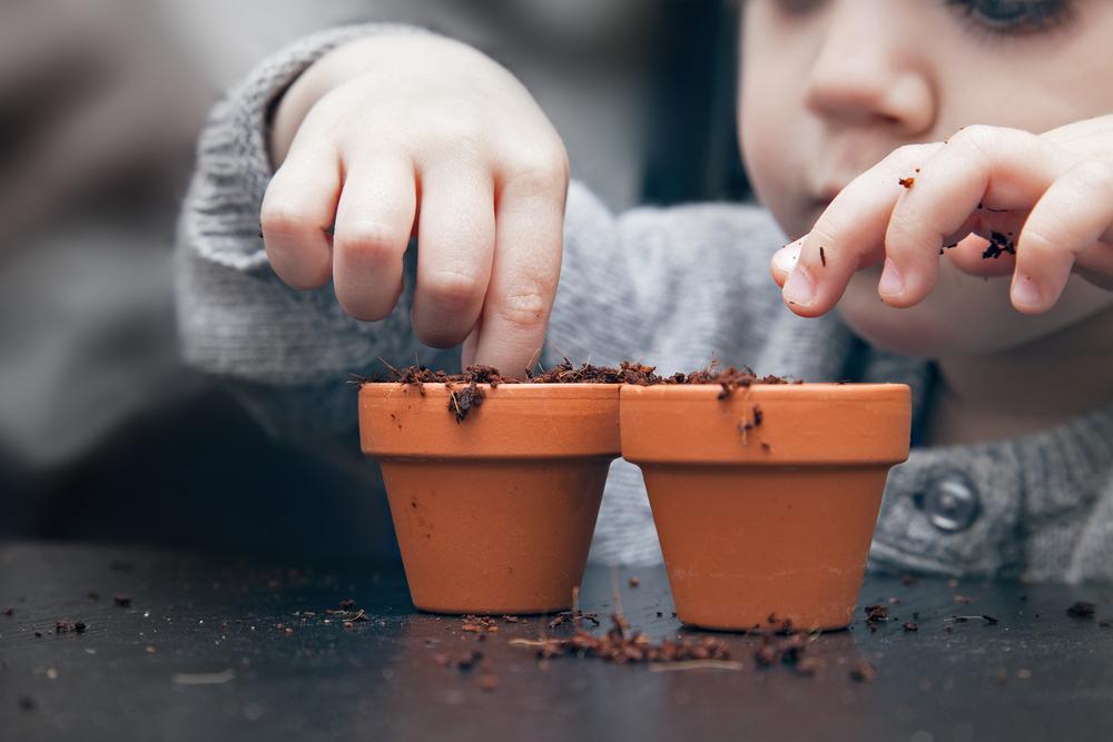 土を植木鉢に入れている子供