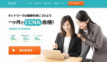 netvision-cap